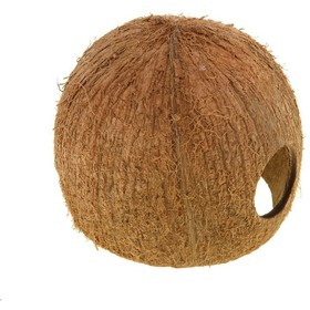 trueblood case 14 3 coconut telegraph Coconut telegraph, key west, fl 1,470 likes swap, sell, or give away anything that you just don't have time to - yard sale, biz baz, etc just post.
