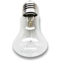 Лампа накаливания 230-40 М50 (100). Интернет-магазин Vseinet.ru Пенза