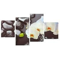 """Фото Картина модульная """"Орхидеи на камнях""""  2шт.-30*37см, 2шт.-30*62см;   120*62см. Интернет-магазин Vseinet.ru Пенза"""