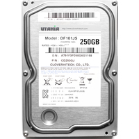 Жесткий диск HDD  Clover Hightech Utania DF101JS, 250Гб, SATA-II, 7200 об/мин, 16 Мб. Интернет-магазин Vseinet.ru Пенза