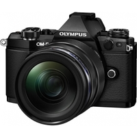 OM-D E-M5 Mark II Kit (E-M5 Mark II Body silver + EZ-M1240 black ). Интернет-магазин Vseinet.ru Пенза