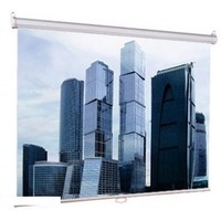 Настенный экран Lumien Eco Picture 180х180 см Matte White (LEP-100102). Интернет-магазин Vseinet.ru Пенза