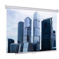 Настенный экран Lumien Eco Picture 200х200 см Matte White (LEP-100103). Интернет-магазин Vseinet.ru Пенза