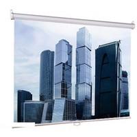 Экран настенный Lumien Eco Picture 150х150 см Matte White (LEP-100101). Интернет-магазин Vseinet.ru Пенза