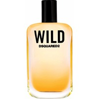 DSQUARED WILD men 100ml edt. Интернет-магазин Vseinet.ru Пенза