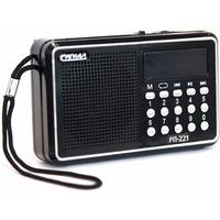 Радиоприемник Сигнал РП-221 220V,USB,SD. Интернет-магазин Vseinet.ru Пенза