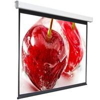 Экран 180x180см Digis Electra-F DSEF-1105 1:1 настенно-потолочный рулонный (моторизованный привод). Интернет-магазин Vseinet.ru Пенза