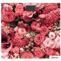Весы напольные Homestar HS-6001L, красные «розы». Интернет-магазин Vseinet.ru Пенза