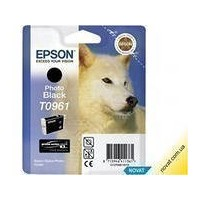 Картридж Epson C13T09674010 для Stylus Photo R2880 (light black). Интернет-магазин Vseinet.ru Пенза