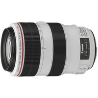 Объектив Canon EF 70-300mm f/4-5.6L IS USM. Интернет-магазин Vseinet.ru Пенза