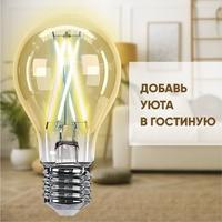 Фото Умная лампа Hiper IoT A60 Filament Vintage E27 (HI-A60FIV). Интернет-магазин Vseinet.ru Пенза
