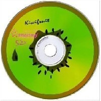 SMARTBUY CD-R 80MIN 52X FRESH-KIWIFRUIT CB-10. Интернет-магазин Vseinet.ru Пенза
