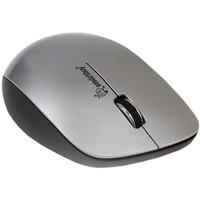 Мышь SmartBuy 309AG беспроводная, USB, серебристый с черным. Интернет-магазин Vseinet.ru Пенза